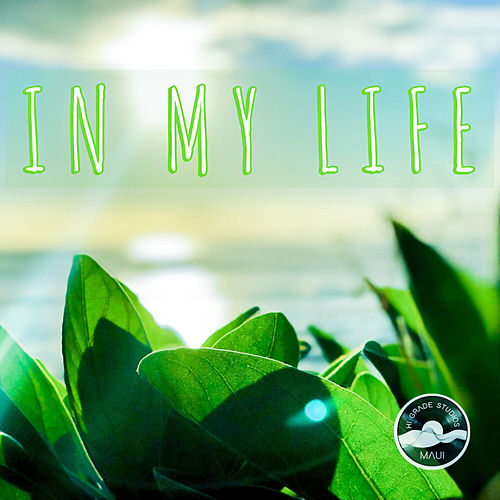 In My Life by Skeptic?