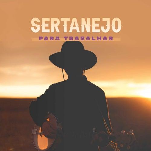 Sertanejo Para Trabalhar de Various Artists