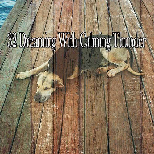 32 Dreaming with Calming Thunder de Rain Sounds and White Noise