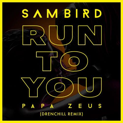 Run To You (Drenchill Remix) de Sam Bird