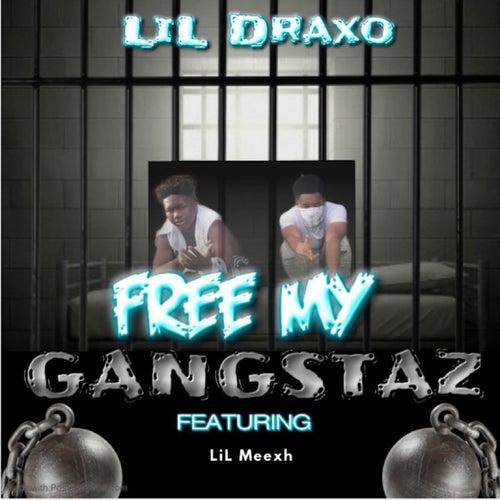 Free My Gangstaz von Lil Draxo