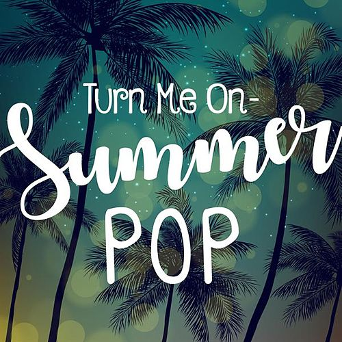 Turn Me On - Summer Pop von Various Artists