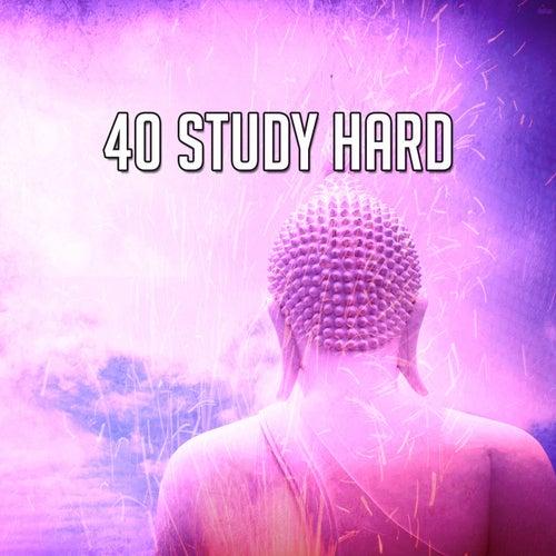 40 Study Hard by Yoga Workout Music (1)