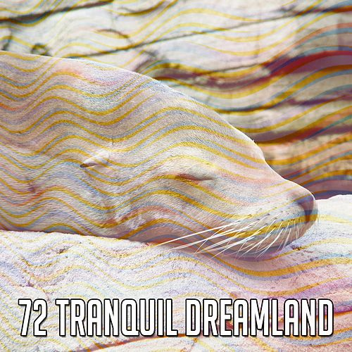 72 Tranquil Dreamland de Lullaby Land