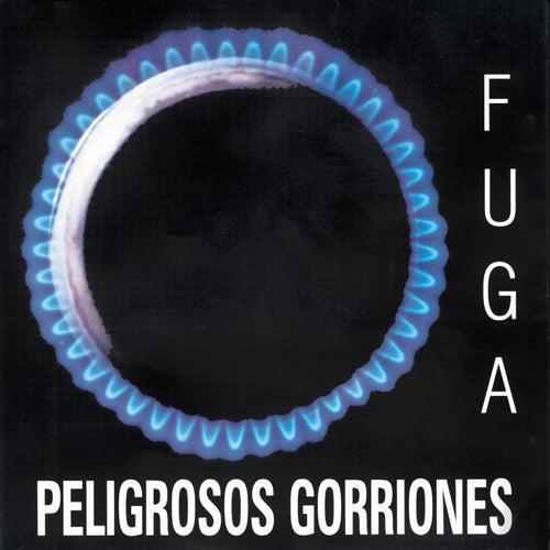 Fuga by Peligrosos Gorriones