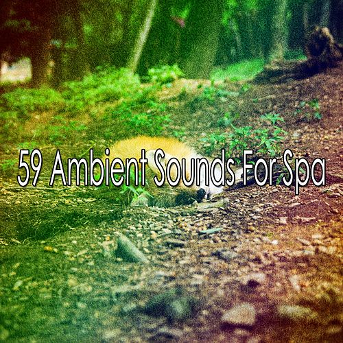 59 Ambient Sounds for Spa de Lullaby Land