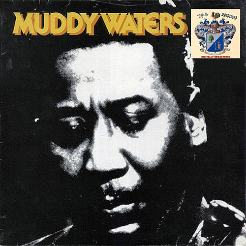 Muddy Waters 2 de Muddy Waters