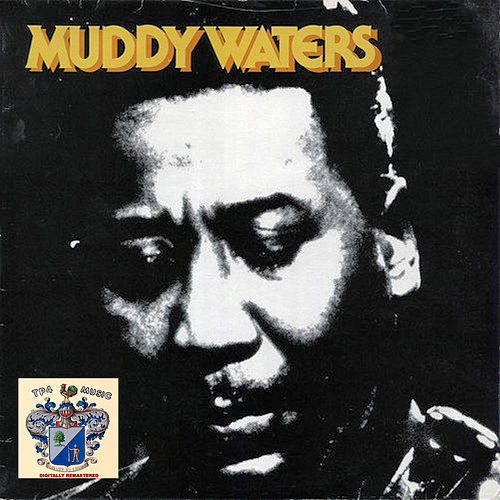 Muddy Waters 1 de Muddy Waters