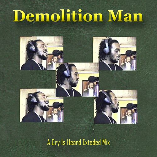 A Cry Is Heard (Extended Mix) by Demolition Man