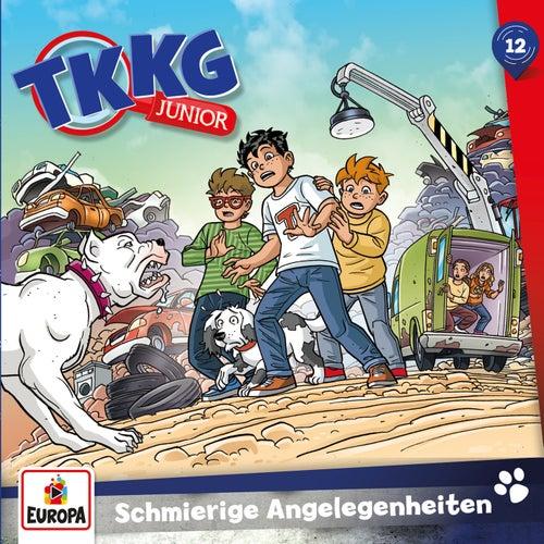012/Schmierige Angelegenheiten von TKKG Junior