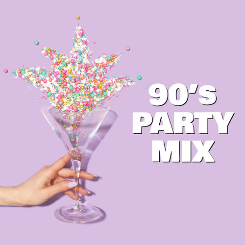 90's Party Mix de Various Artists