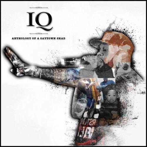 Anthology of a Saytown Shad von IQ