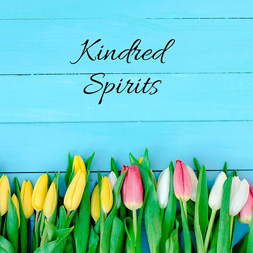 Kindred Spirits de Ocean Sounds Collection (1)