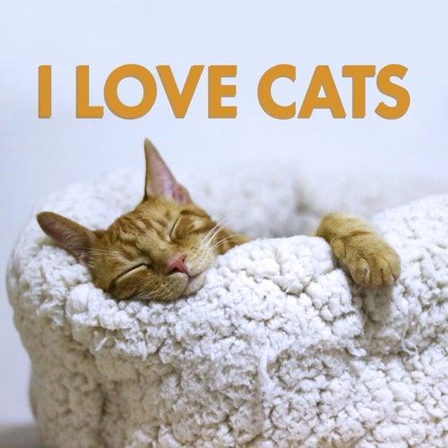 I Love Cats de Various Artists
