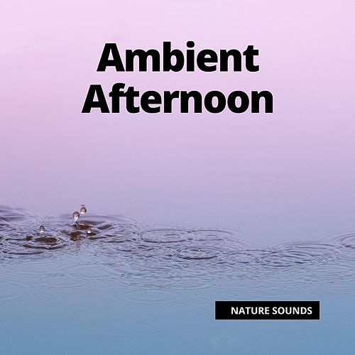 Ambient Afternoon by Relaxing Rain Sounds