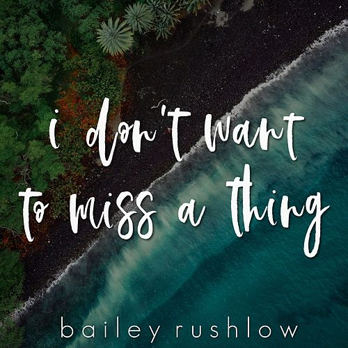 I Don't Want to Miss a Thing (Acoustic) by Bailey Rushlow