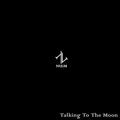 Talking To The Moon by NUiM