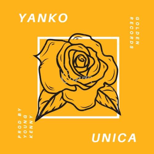 Unica by Yanko