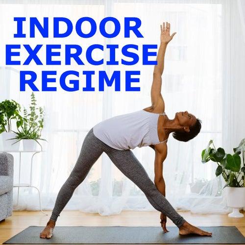 Indoor Exercise Regime de Various Artists