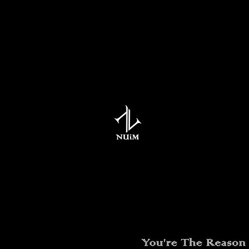 You're The Reason by NUiM