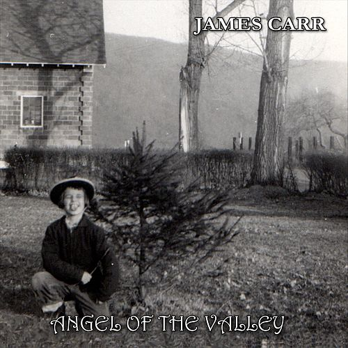 Angel of the Valley by James Carr