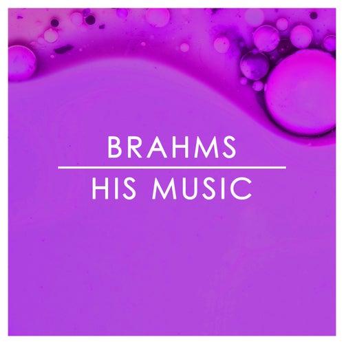 Brahms: His Music von 新山恵理