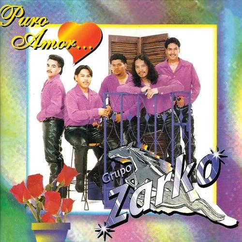 Puro Amor by Grupo Zarko