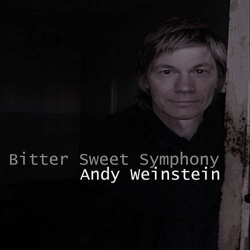 Bitter Sweet Symphony (Radio Version) by Andy Weinstein