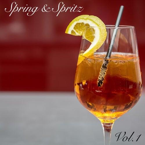 Spring & Spritz Vol.1 von Various Artists