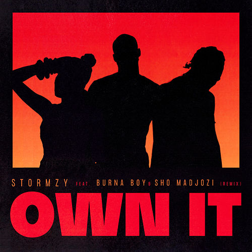 Own It (feat. Burna Boy & Sho Madjozi) [Remix] by Stormzy