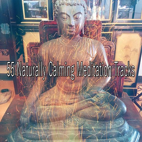 55 Naturally Calming Meditation Tracks de massage