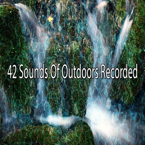 42 Sounds of Outdoors Recorded de Japanese Relaxation and Meditation (1)