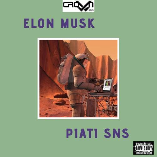 Elon Musk de Piati