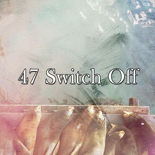 47 Switch Off de Best Relaxing SPA Music