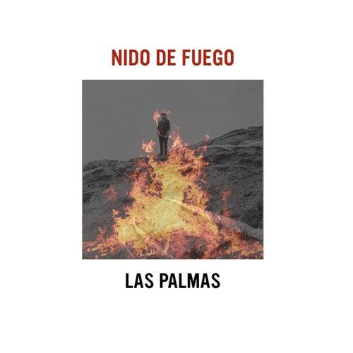 Nido de Fuego de Las Palmas