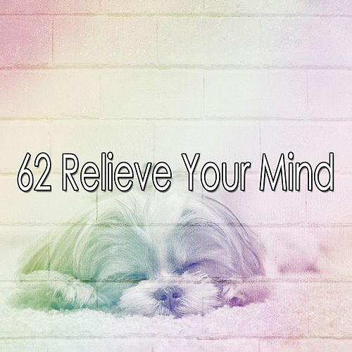 62 Relieve Your Mind by Deep Sleep Music Academy