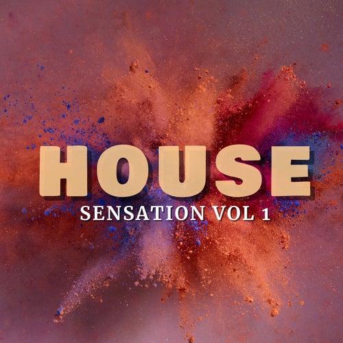 House Sensation, Vol. 1 de MD Deejay