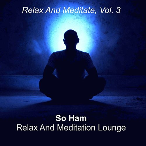 Relax and Meditate, Vol. 3 von So Ham Relax And Meditation Lounge