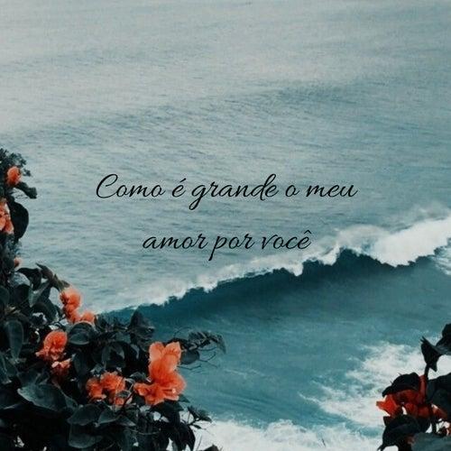 Como É Grande o Meu Amor por Você de Samuel da Silva