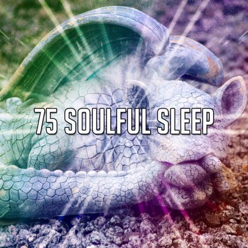 75 Soulful Sle - EP de White Noise Babies