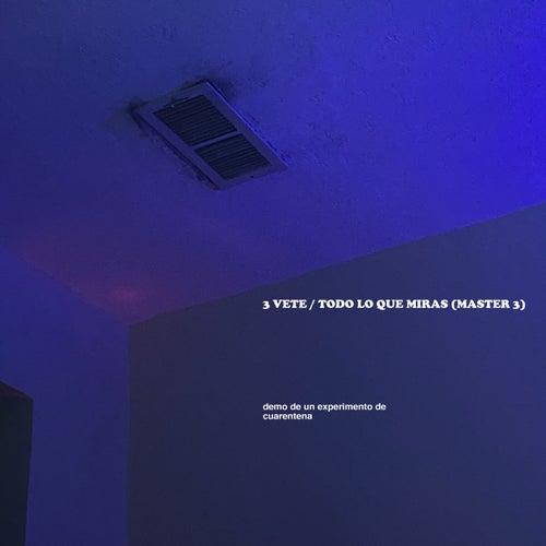 3 VETE / TODO LO QUE MIRAS (MASTER 3) (Demo De Un Experimento De Cuarentena) de Ed Maverick