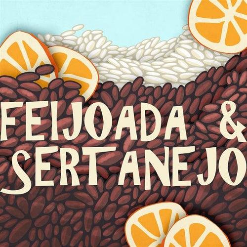 Feijoada & Sertanejo de Various Artists