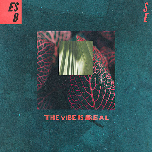 The Vibe Is Real by Ess Be