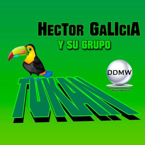 Hector Galicia y Su Grupo Tukan by Hector Galicia Y Su Grupo Tukan