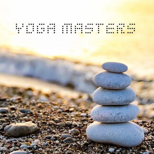 Yoga Masters de Nightnoise