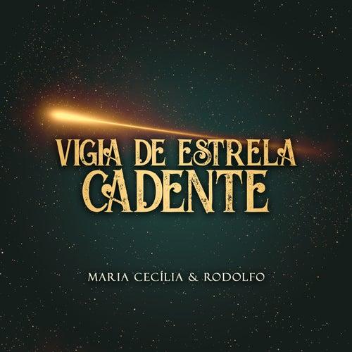 Vigia de Estrela Cadente de Maria Cecília e Rodolfo
