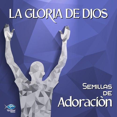 Semillas de Adoración - La Gloria de Dios de German Garcia