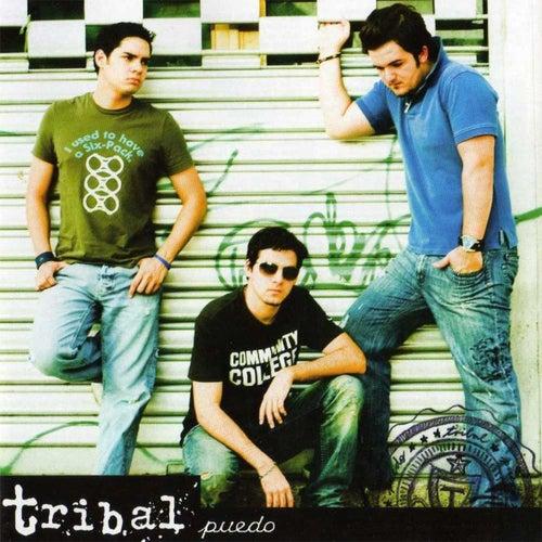 Puedo von Tribal
