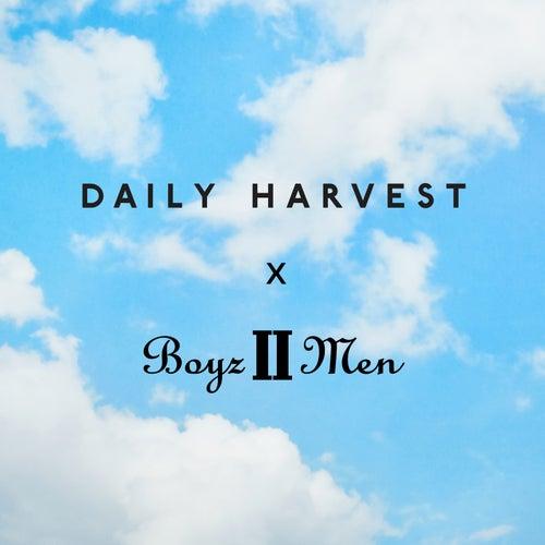 Daily Harvest by Boyz II Men