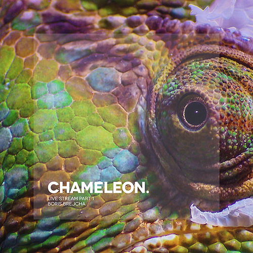 Chameleon (Live Stream Part 1) de Boris Brejcha